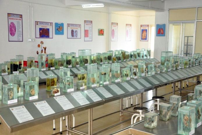 Shree Krishna College of Pharmacy
